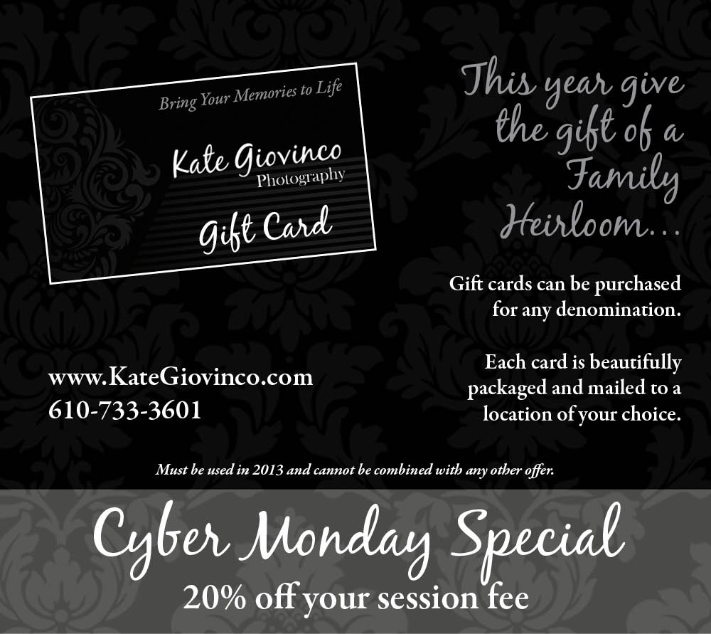 Cyber Monday Special: One Day Only